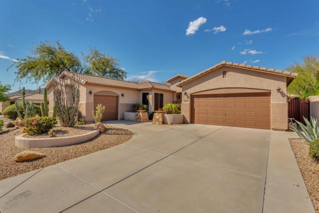6134 W Hedgehog Place, Phoenix, AZ 85083 (MLS #5902323) :: Team Wilson Real Estate