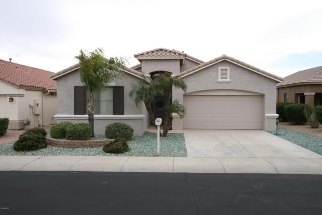 18328 N Coconino Drive, Surprise, AZ 85374 (MLS #5902330) :: Yost Realty Group at RE/MAX Casa Grande
