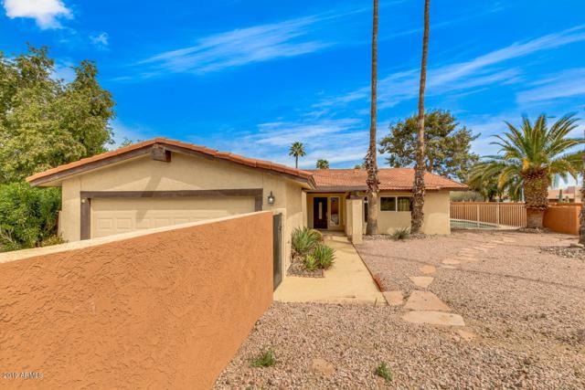 7005 N Via Nueva, Scottsdale, AZ 85258 (MLS #5902346) :: Yost Realty Group at RE/MAX Casa Grande