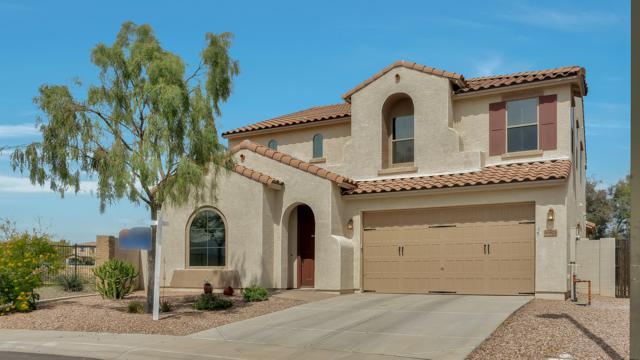 16903 N 183RD Lane, Surprise, AZ 85388 (MLS #5902386) :: Occasio Realty