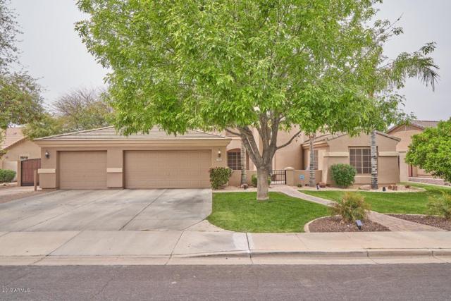 1536 N Loma Vista, Mesa, AZ 85213 (MLS #5902388) :: Occasio Realty