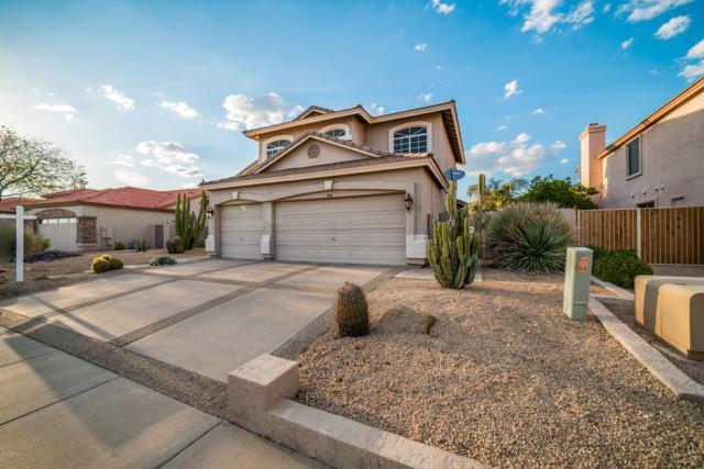 5516 W Lone Cactus Drive, Glendale, AZ 85308 (MLS #5902394) :: Yost Realty Group at RE/MAX Casa Grande