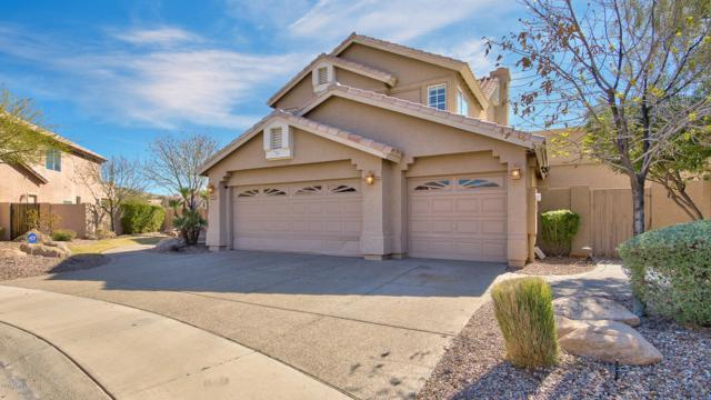 15031 S Foxtail Lane, Phoenix, AZ 85048 (MLS #5902398) :: Yost Realty Group at RE/MAX Casa Grande