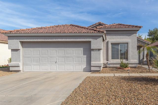 2034 E Aire Libre Avenue, Phoenix, AZ 85022 (MLS #5902509) :: Yost Realty Group at RE/MAX Casa Grande
