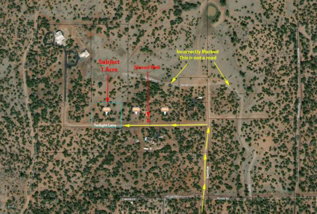 5056 Twilight Lane, Clay Springs, AZ 85923 (MLS #5902519) :: CC & Co. Real Estate Team