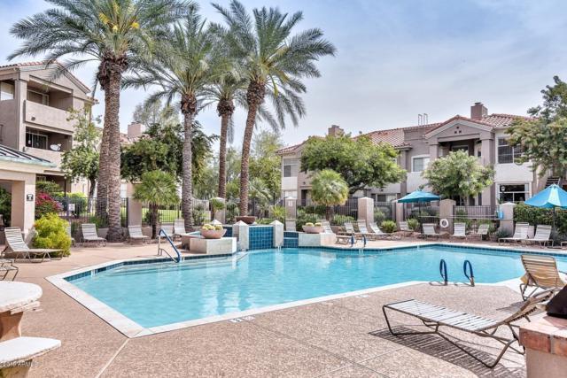 3830 E Lakewood Parkway E #2031, Phoenix, AZ 85048 (MLS #5902529) :: Yost Realty Group at RE/MAX Casa Grande