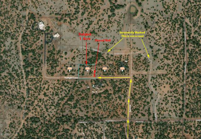 5060 Twilight Lane, Clay Springs, AZ 85923 (MLS #5902543) :: CC & Co. Real Estate Team
