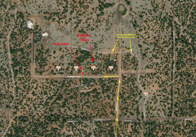 5064 Twilight Lane, Clay Springs, AZ 85923 (MLS #5902552) :: CC & Co. Real Estate Team