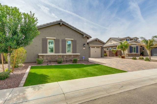 391 E Bellerive Place, Chandler, AZ 85249 (MLS #5902560) :: The Everest Team at My Home Group