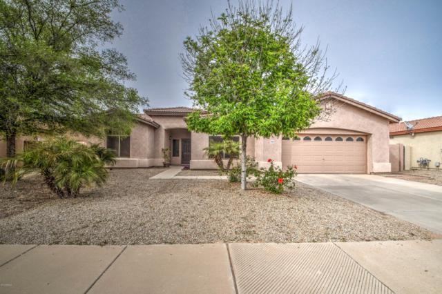 21058 E Stirrup Street, Queen Creek, AZ 85142 (MLS #5902562) :: Yost Realty Group at RE/MAX Casa Grande