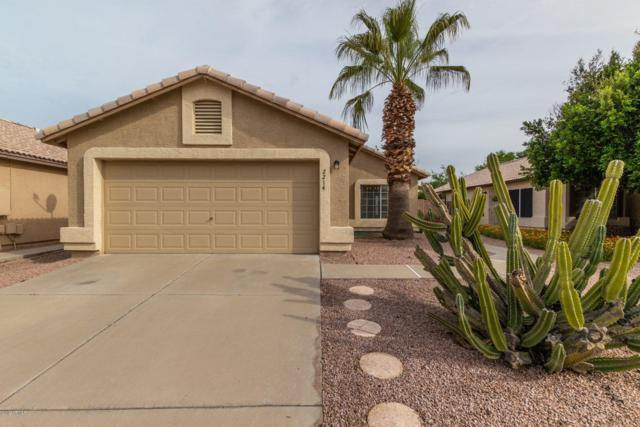 2214 E Aire Libre Avenue, Phoenix, AZ 85022 (MLS #5902594) :: Yost Realty Group at RE/MAX Casa Grande