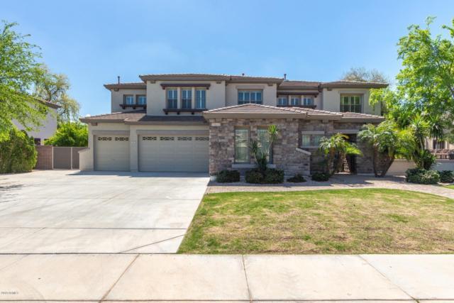 643 E Hopkins Road, Gilbert, AZ 85295 (MLS #5902604) :: Revelation Real Estate
