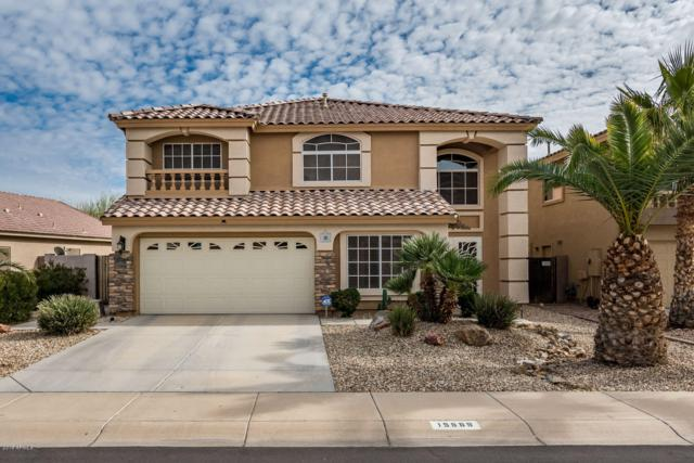 15569 W Ventura Street, Surprise, AZ 85379 (MLS #5902621) :: Occasio Realty