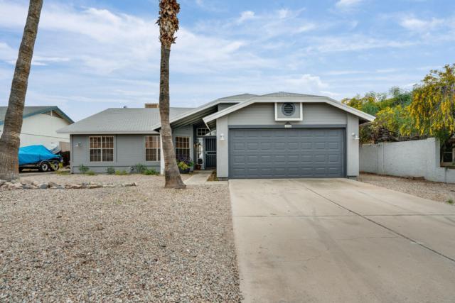 1109 W Behrend Drive, Phoenix, AZ 85027 (MLS #5902623) :: Riddle Realty