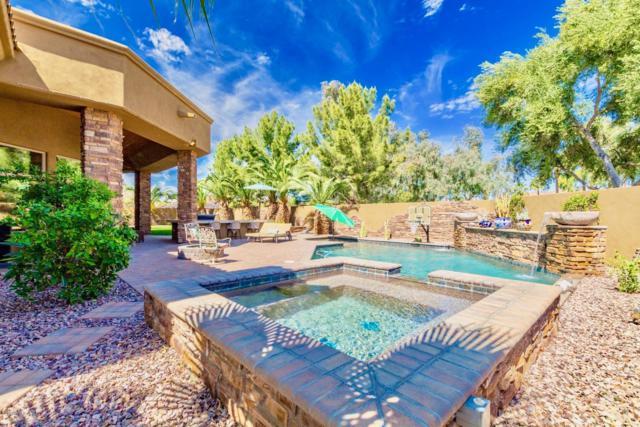 4450 E Gemini Place, Chandler, AZ 85249 (MLS #5902637) :: Yost Realty Group at RE/MAX Casa Grande