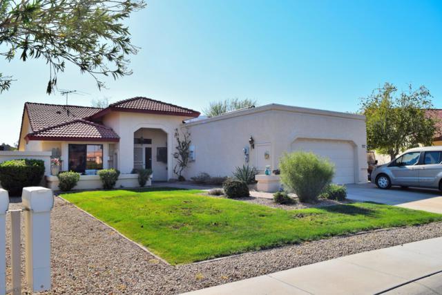 19807 N Alta Loma Drive, Sun City West, AZ 85375 (MLS #5902697) :: Yost Realty Group at RE/MAX Casa Grande