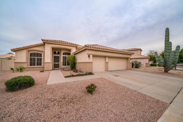 1924 W Hawk Way, Chandler, AZ 85286 (MLS #5902699) :: Lux Home Group at  Keller Williams Realty Phoenix