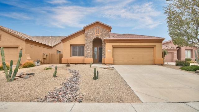 14418 N Buckthorn Court, Fountain Hills, AZ 85268 (MLS #5902762) :: Yost Realty Group at RE/MAX Casa Grande