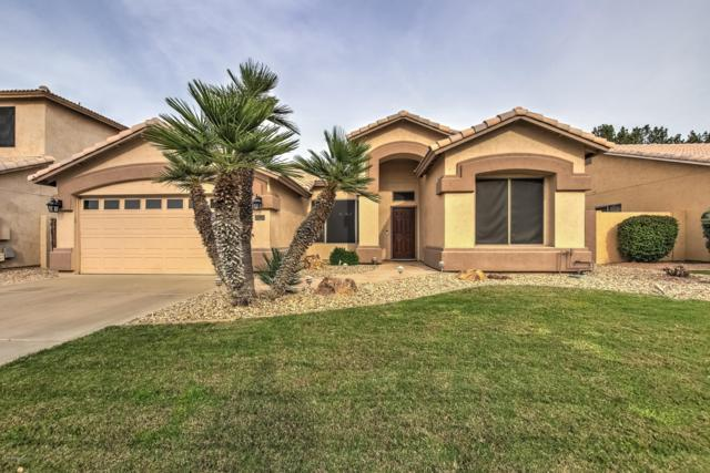 739 N Ocotillo Lane, Gilbert, AZ 85233 (MLS #5902773) :: Yost Realty Group at RE/MAX Casa Grande