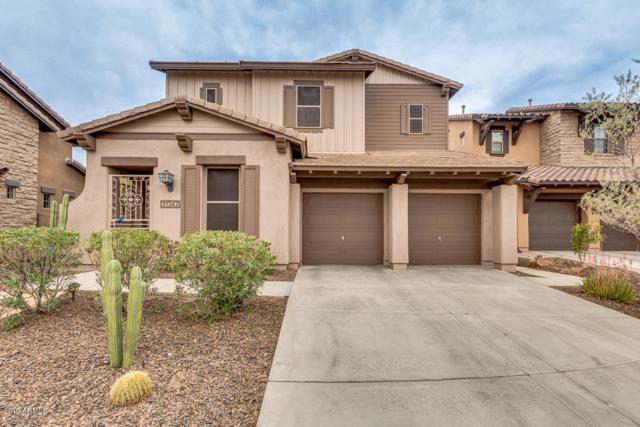 31342 N 137TH Avenue, Peoria, AZ 85383 (MLS #5902791) :: Yost Realty Group at RE/MAX Casa Grande
