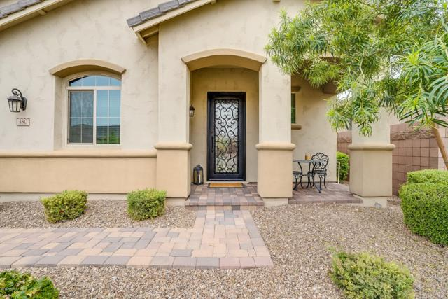380 E Torrey Pines Place, Chandler, AZ 85249 (MLS #5902842) :: The Everest Team at My Home Group