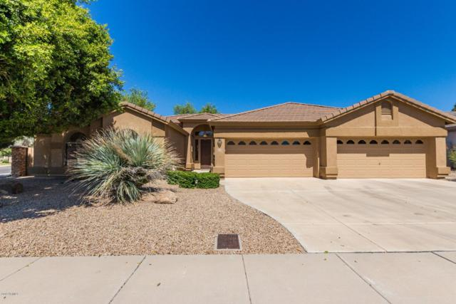 21106 N 70TH Drive, Glendale, AZ 85308 (MLS #5902843) :: RE/MAX Excalibur