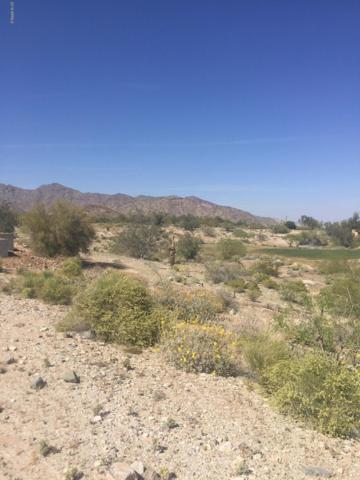 21560 W Buckhorn Bend, Buckeye, AZ 85396 (MLS #5902872) :: Yost Realty Group at RE/MAX Casa Grande