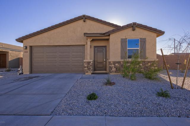 2201 S 237TH Drive, Buckeye, AZ 85326 (MLS #5902919) :: Yost Realty Group at RE/MAX Casa Grande