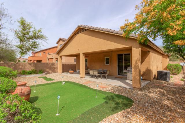 4933 W St Anne Avenue, Laveen, AZ 85339 (MLS #5903019) :: Yost Realty Group at RE/MAX Casa Grande