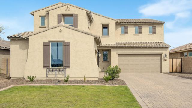 4983 S Joshua Tree Court, Gilbert, AZ 85298 (MLS #5903034) :: Yost Realty Group at RE/MAX Casa Grande