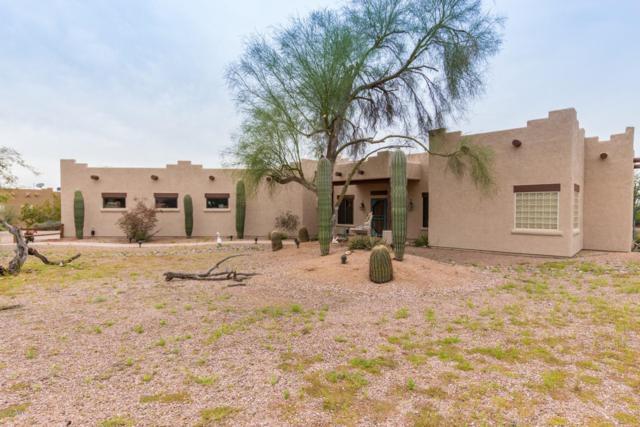 4284 N Colt Road, Apache Junction, AZ 85119 (MLS #5903040) :: Yost Realty Group at RE/MAX Casa Grande
