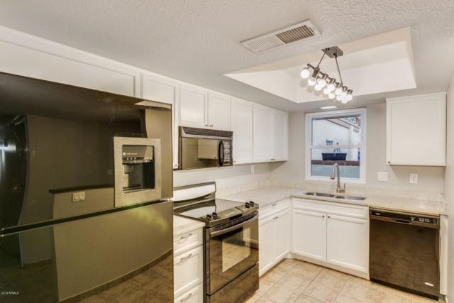 2411 W Voltaire Avenue, Phoenix, AZ 85029 (MLS #5903074) :: Yost Realty Group at RE/MAX Casa Grande