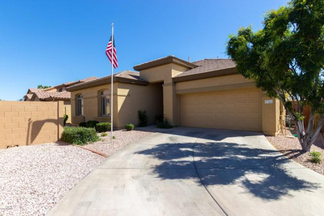 905 E Sheffield Avenue, Chandler, AZ 85225 (MLS #5903086) :: Arizona 1 Real Estate Team