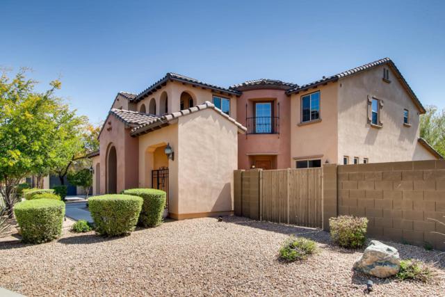 3757 E Ringtail Way, Phoenix, AZ 85050 (MLS #5903104) :: Yost Realty Group at RE/MAX Casa Grande