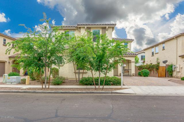 2951 E Megan Street, Gilbert, AZ 85295 (MLS #5903127) :: Yost Realty Group at RE/MAX Casa Grande