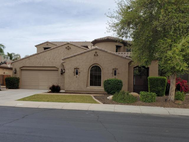 2570 E Balsam Court, Chandler, AZ 85286 (MLS #5903132) :: RE/MAX Excalibur