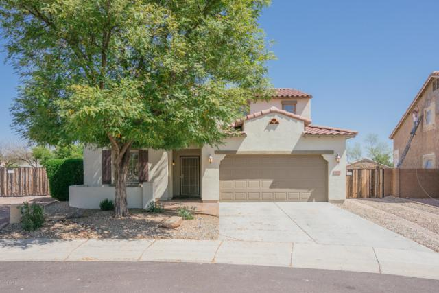 14869 N 173RD Drive, Surprise, AZ 85388 (MLS #5903212) :: Occasio Realty