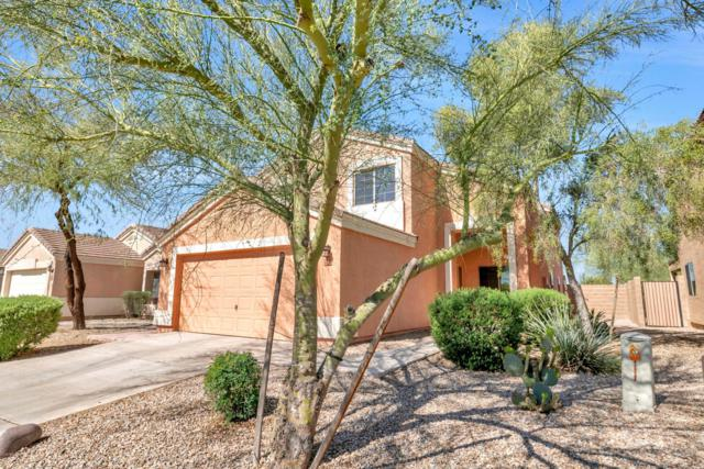 23798 N Wilderness Way, Florence, AZ 85132 (MLS #5903215) :: Yost Realty Group at RE/MAX Casa Grande