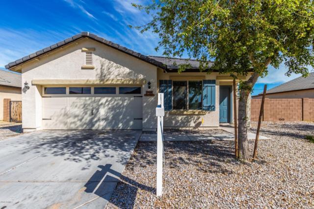 25426 W Ellis Drive, Buckeye, AZ 85326 (MLS #5903295) :: Yost Realty Group at RE/MAX Casa Grande