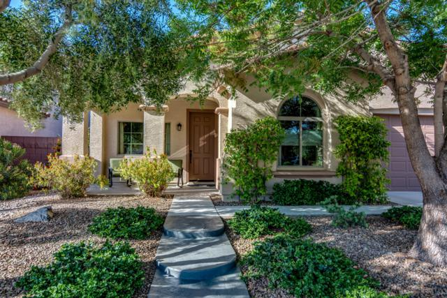 690 W Reeves Avenue, Queen Creek, AZ 85140 (MLS #5903382) :: Revelation Real Estate