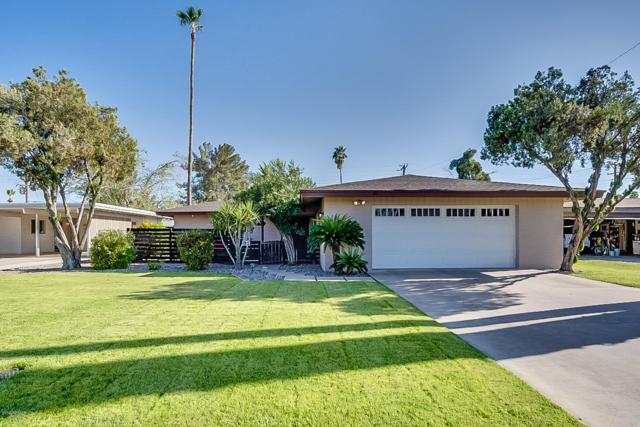 1119 E Malibu Drive, Tempe, AZ 85282 (MLS #5903391) :: Yost Realty Group at RE/MAX Casa Grande