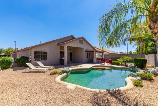 2242 S Nielson Street, Gilbert, AZ 85295 (MLS #5903410) :: Yost Realty Group at RE/MAX Casa Grande