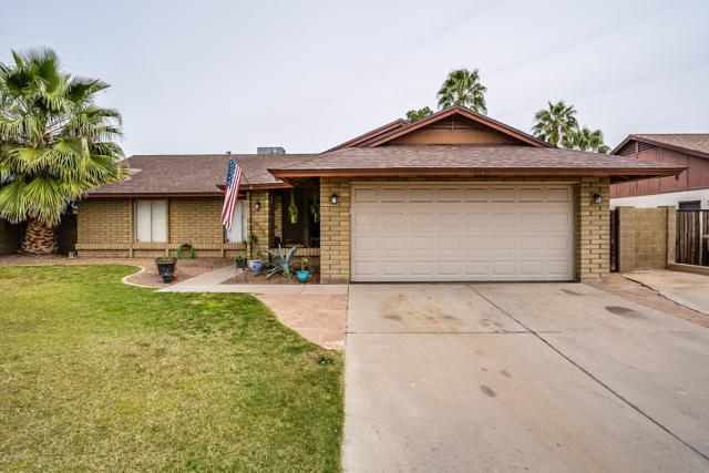 10231 N 65TH Avenue, Glendale, AZ 85302 (MLS #5903415) :: Yost Realty Group at RE/MAX Casa Grande