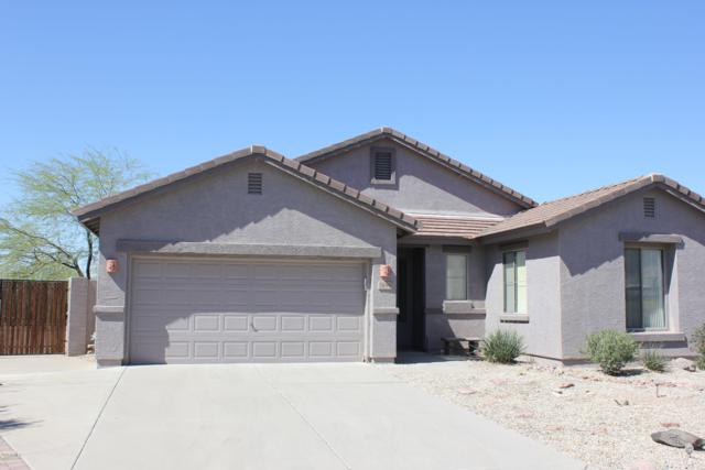 7449 E Globemallow Lane, Gold Canyon, AZ 85118 (MLS #5903441) :: Yost Realty Group at RE/MAX Casa Grande