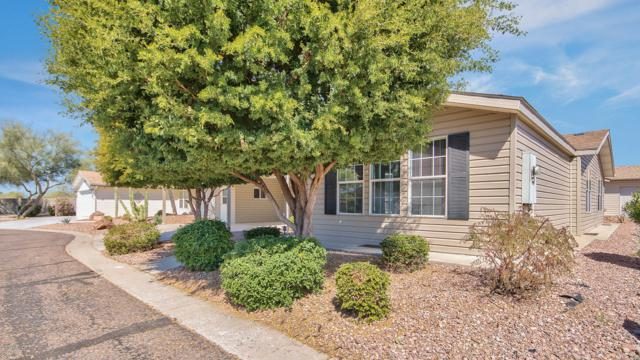 3301 S Goldfield Road #1015, Apache Junction, AZ 85119 (MLS #5903472) :: Lucido Agency