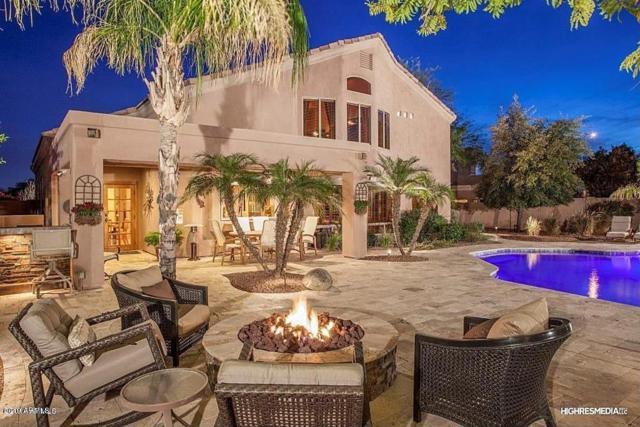 9766 E Celtic Drive, Scottsdale, AZ 85260 (MLS #5903560) :: Yost Realty Group at RE/MAX Casa Grande