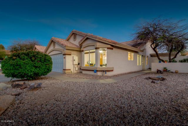 15609 W Ripple Road, Goodyear, AZ 85338 (MLS #5903584) :: Yost Realty Group at RE/MAX Casa Grande