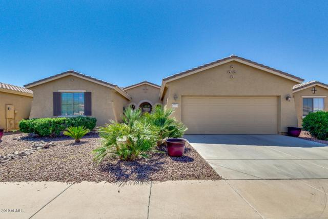 42575 W Abbey Road, Maricopa, AZ 85138 (MLS #5903588) :: Occasio Realty