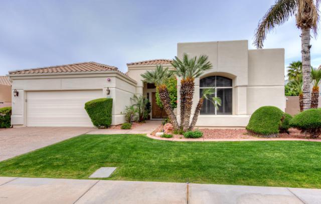 9082 N 115TH Way, Scottsdale, AZ 85259 (MLS #5903591) :: Yost Realty Group at RE/MAX Casa Grande