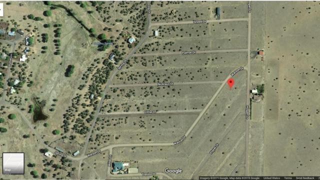 40xxx Cr 5089 --279, Concho, AZ 85924 (MLS #5903660) :: Scott Gaertner Group